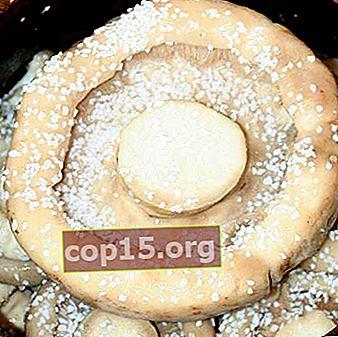 Salatura fredda e calda dei funghi del latte con aceto per l'inverno
