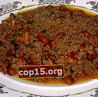 Recetas de carne picada de hongos de agáricos de miel