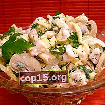 Insalate di pollo e funghi in salamoia: ricette semplici
