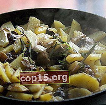 Champignons met aardappelen en kip- of kalkoenfilets