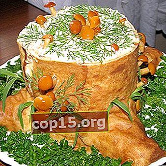 Populaire salades met ingelegde champignons