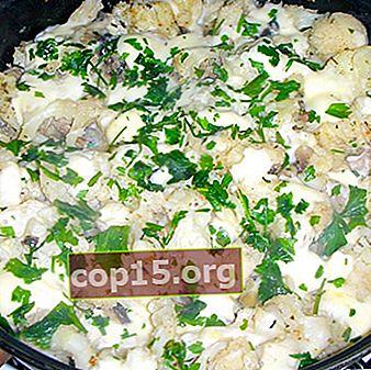 Champignons con cavolfiore: ricette per primi e secondi piatti