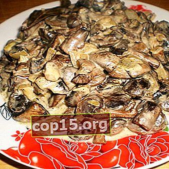 Funghi al miele con maionese: ricette per piatti a base di funghi