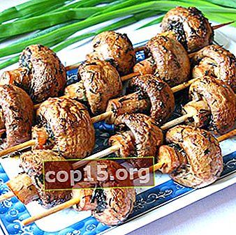 Champignons frits au feu: recettes pour un pique-nique