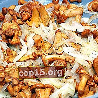 Finferli fritti con cipolle: ricette per casalinghe principianti
