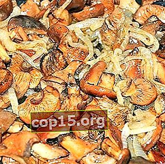 Comment faire frire des champignons: recettes de plats délicieux