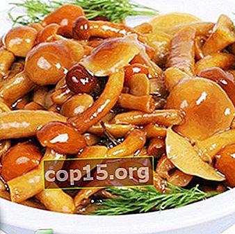 Funghi al miele senza sterilizzazione: ricette per preparazioni di funghi per l'inverno
