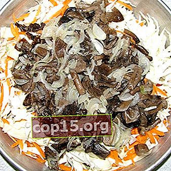 Solyanka di funghi freschi con verdure