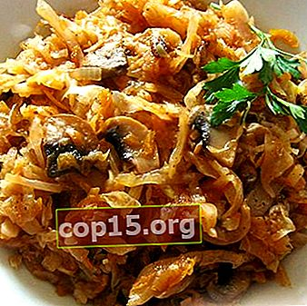 Champignons met kool: zelfgemaakte recepten
