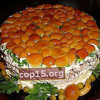 Salade Lesnaya Polyana aux agarics au miel: recettes