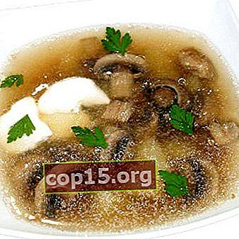 Recetas de caldo de hongos porcini