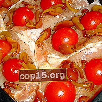 Setas de miel con tomates: recetas de preparaciones para el invierno.