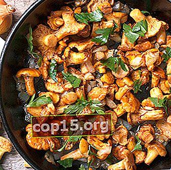 Hoe cantharellen in een pan te bakken: kookrecepten