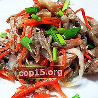 Koreaanse oesterzwammen: zelfgemaakte recepten