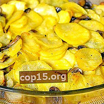 Aardappelen met champignons in de oven: populaire recepten