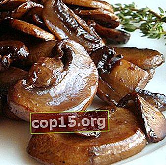 Frittura di funghi prataioli: ricette per piatti a base di funghi