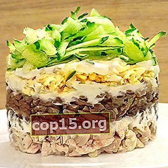 Gelaagde salades met champignons: originele recepten