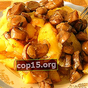 Cantharellengerechten met aardappelen in zure room