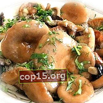 Gătit marinată pentru ciuperci în diferite moduri