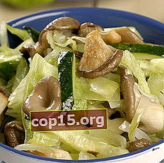 Salate de ciuperci de stridii: rețete pentru preparate delicioase