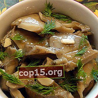 Gătit feluri de mâncare din ciuperci de lapte alb