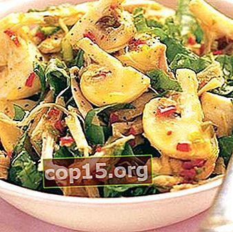 Pittige salades met champignons uit blik