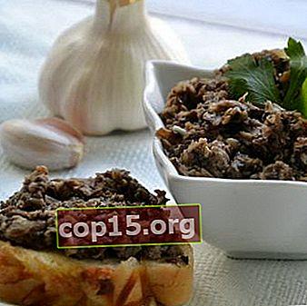 Caviale di funghi di latte per l'inverno: ricette per deliziosi spuntini