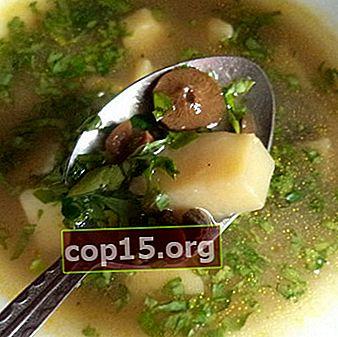 Zuppe con funghi e patate: ricette per i primi piatti