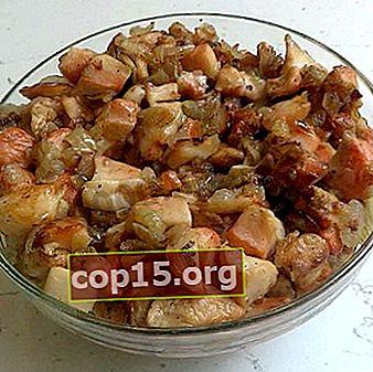Russula fritta: ricette per cucinare piatti a base di funghi