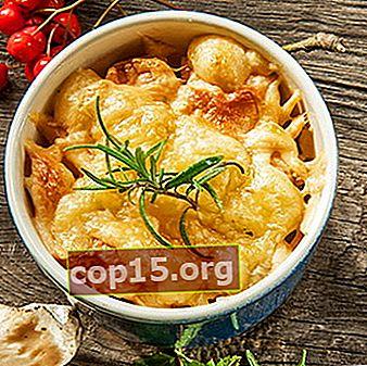 Recepten voor julienne van champignons van honingzwammen