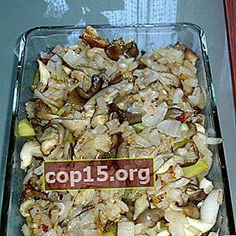 Ostronsvamp med potatis i en stekpanna, i en ugn och en långsam spis