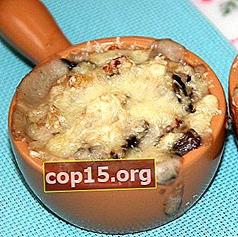 Julienne från färska, torkade och frysta porcini-svampar