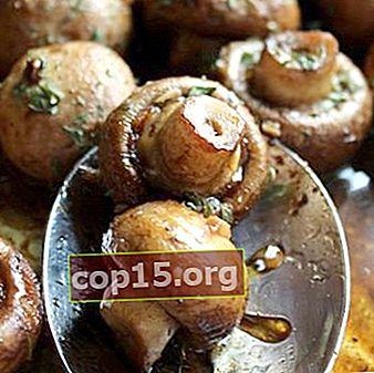 Come cuocere i funghi prataioli: ricette per il forno e il multicooker