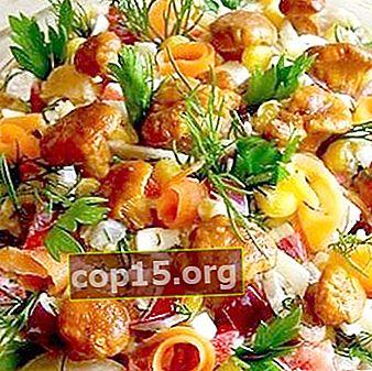 Insalate con funghi: ricette per antipasti di funghi