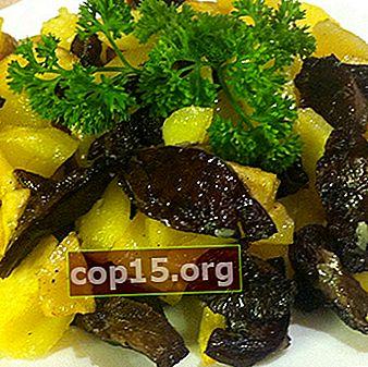 Ricette di frittura per la preparazione di porcini e funghi neri