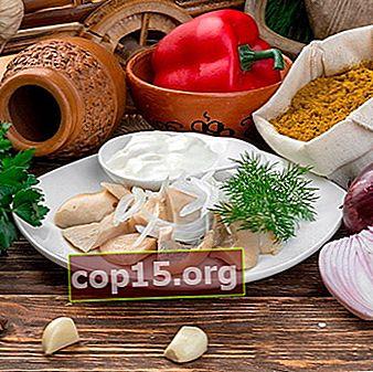 Preparazione rapida di funghi al latte: ricette con una descrizione passo passo