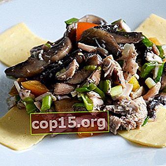 Cucinare piatti di funghi fritti: ricette con foto