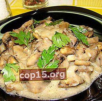 Funghi ostrica brasati: ricette per piatti prelibati