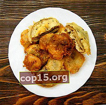 Funghi ostrica in pastella: ricette interessanti