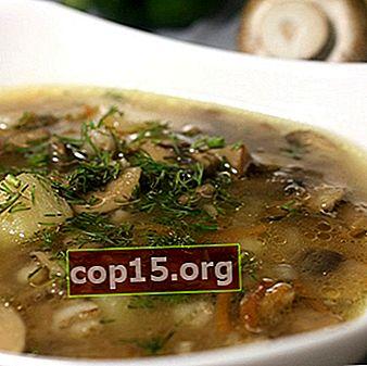 Deliziose zuppe di champignon in scatola