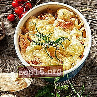 Ricette Julienne con pollo e funghi con panna acida