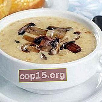 Zuppa di purea di funghi fresca e congelata