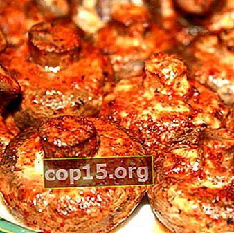 Piatti veloci di funghi cotti al microonde
