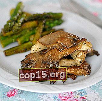 Funghi ostrica al forno: ricette con foto