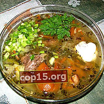 Supe de camelină: rețete pentru primele feluri de mâncare cu ciuperci