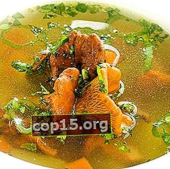 Supe de chanterelle: rețete pentru primele feluri de mâncare