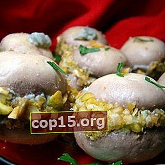 Cucinare snack a base di funghi caldi e freddi