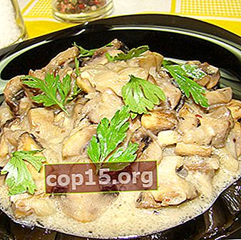 Ricette per cucinare i funghi porcini con panna acida
