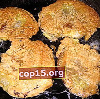Come cucinare le costolette di funghi di ostrica: ricette con foto