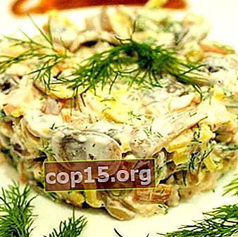 Cucinare insalate di pollo con funghi